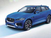 Jaguar : la marque auto préférée des jeunes Seniors