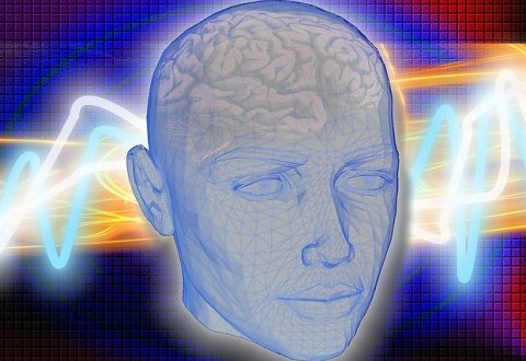 Des liens entre le «bien-être mental» et la santé du cerveau ?