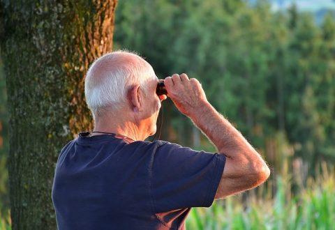 L'âge de la retraite recule lentement, tandis que les écarts femmes-hommes sont en passe d'être gommés (OCDE)